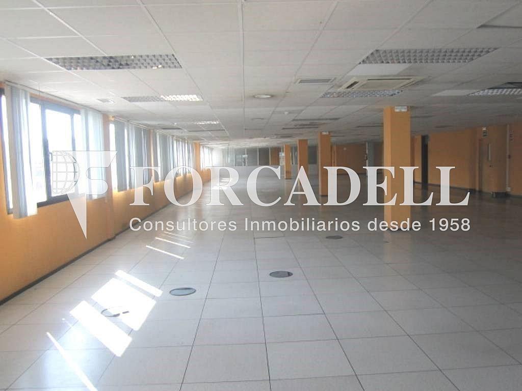 14 - Oficina en alquiler en calle Marina, Centre en Hospitalet de Llobregat, L´ - 263445555