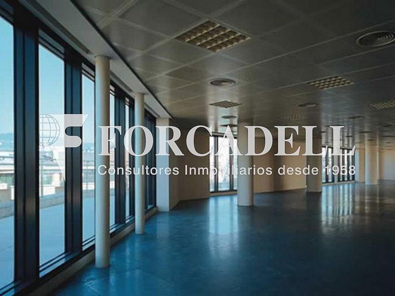Interior 1 - Oficina en alquiler en calle Berlin, Les corts en Barcelona - 263446470
