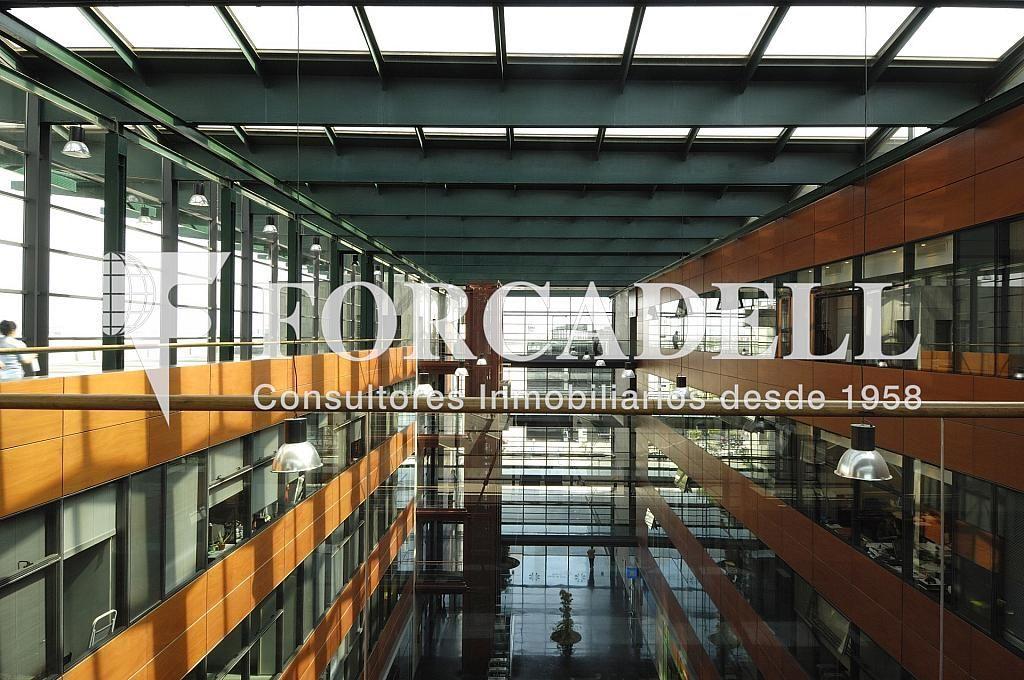 _DSC8147 - Oficina en alquiler en calle Eol, Prat de Llobregat, El - 263452146