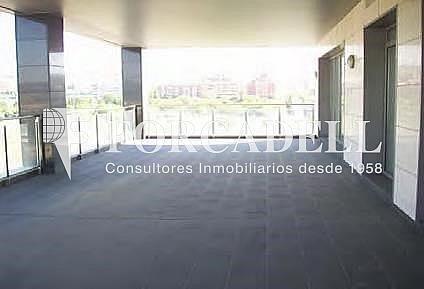 5 - Oficina en alquiler en edificio Barcelona Brasol, Sant Joan Despí - 263453493