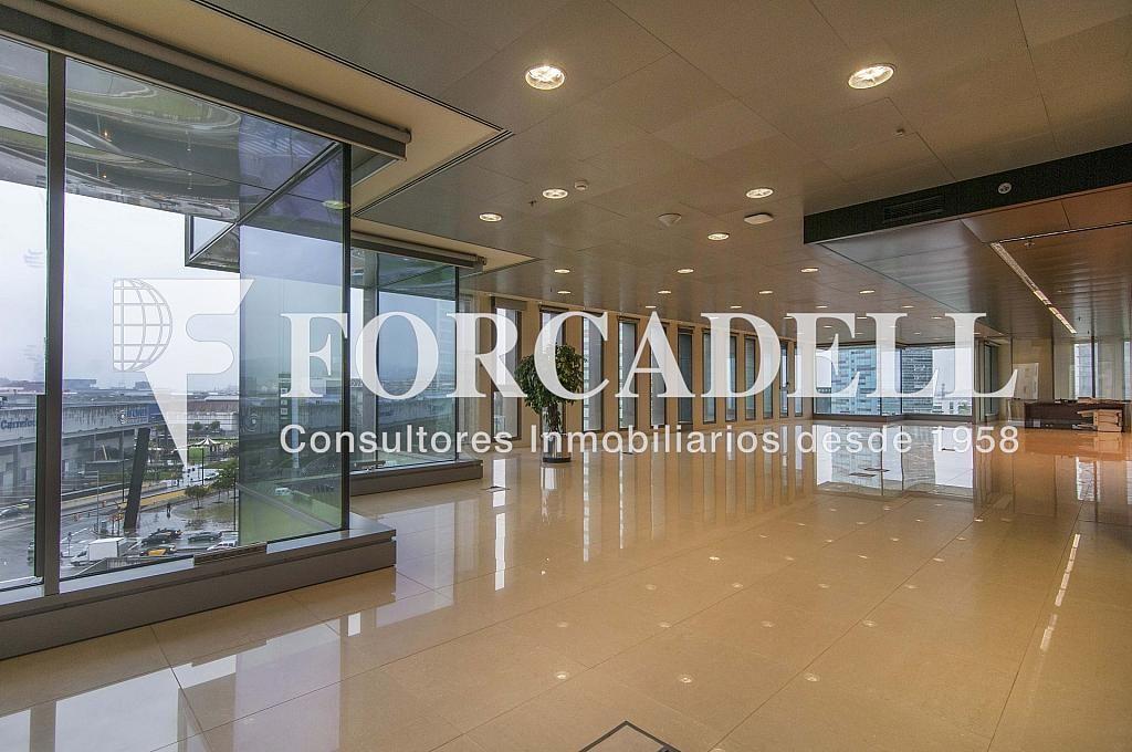 _DSC3645 - Oficina en alquiler en calle Europa, Gran Via LH en Hospitalet de Llobregat, L´ - 278703725