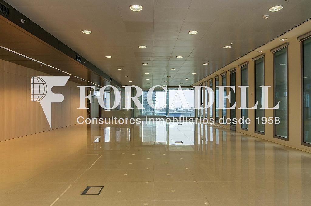 _DSC3652 - Oficina en alquiler en calle Europa, Gran Via LH en Hospitalet de Llobregat, L´ - 278703728