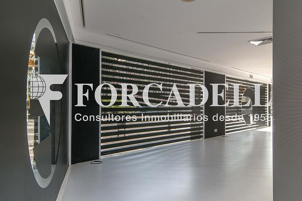 _DSC9980reto - Local comercial en alquiler en Eixample dreta en Barcelona - 266463701