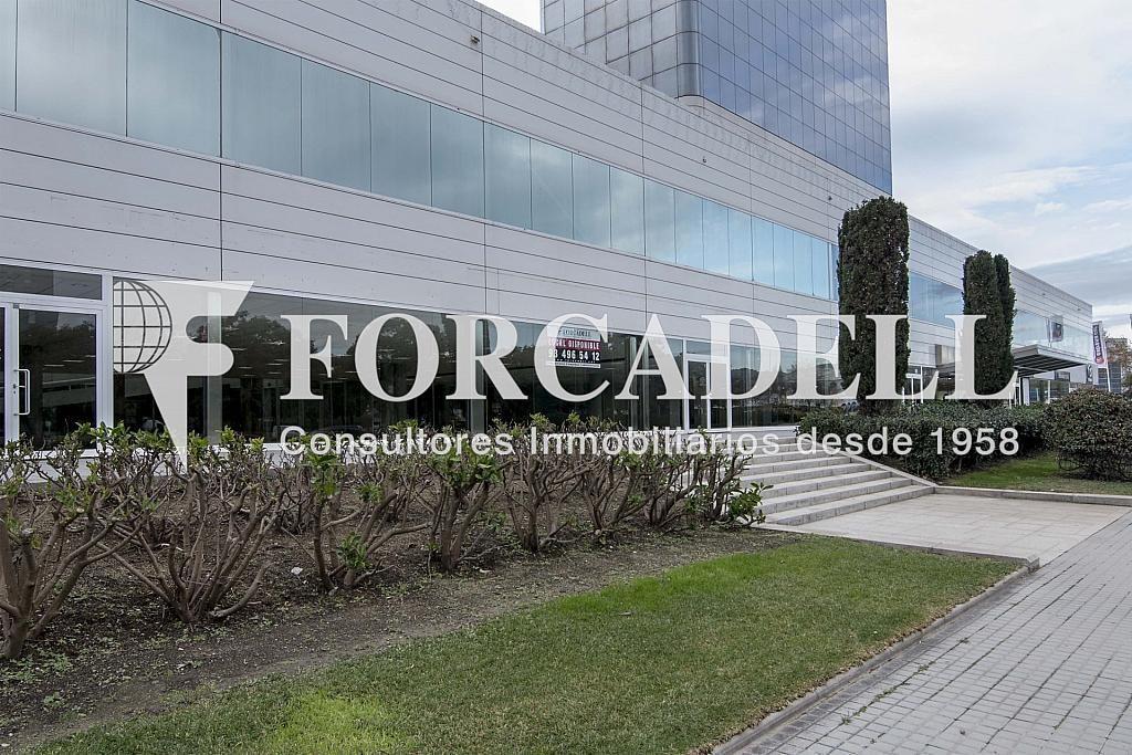 DSC_7552 - Local comercial en alquiler en Pla boet en Mataró - 401067495