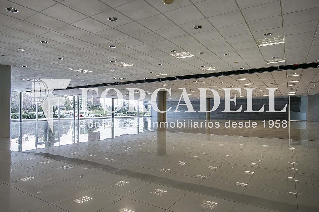 DSC_7415 - Local comercial en alquiler en Pla boet en Mataró - 401067498