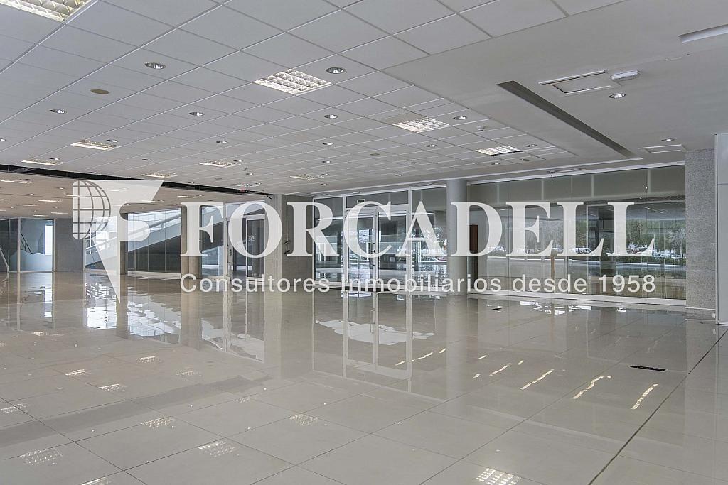 DSC_7414 - Local comercial en alquiler en Pla boet en Mataró - 401067501