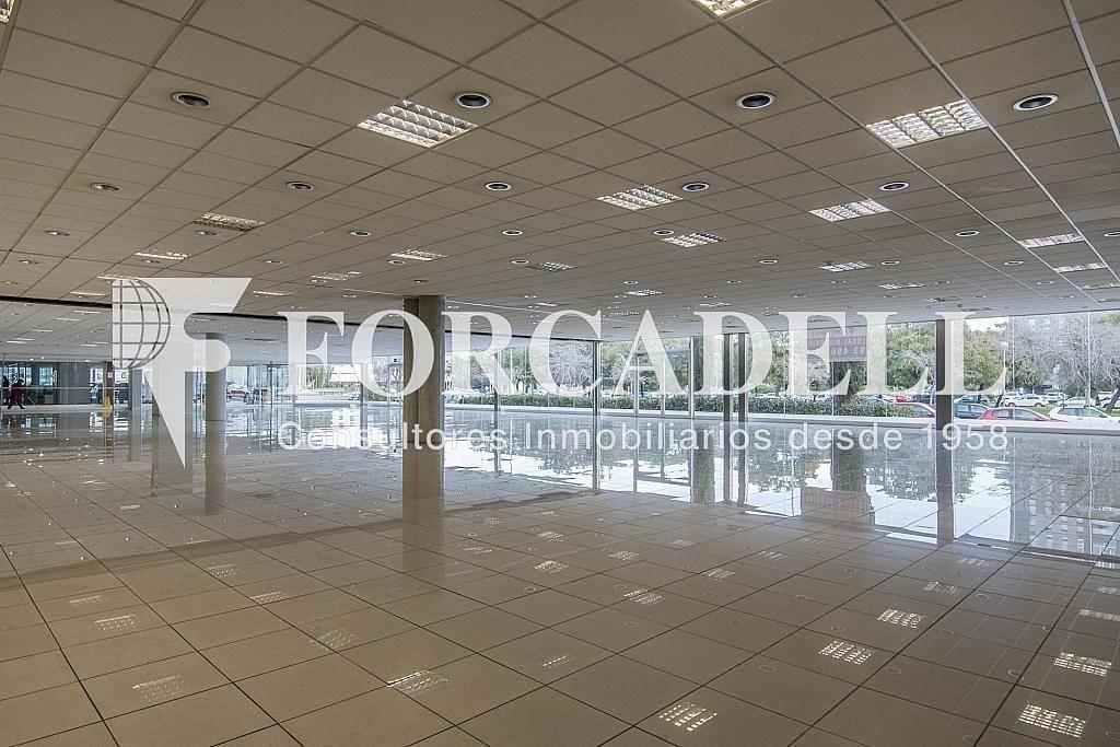 DSC_7417 - Local comercial en alquiler en Pla boet en Mataró - 401067504