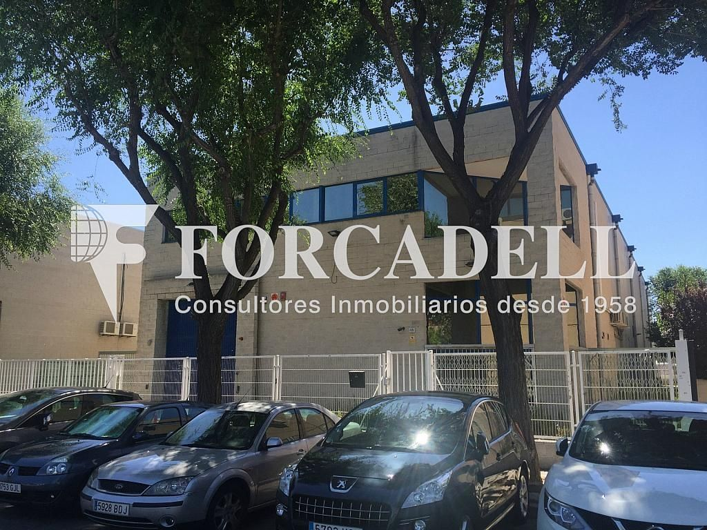 IMG_4030 - Nave industrial en alquiler en calle Botanica, Gran Via LH en Hospitalet de Llobregat, L´ - 301982550