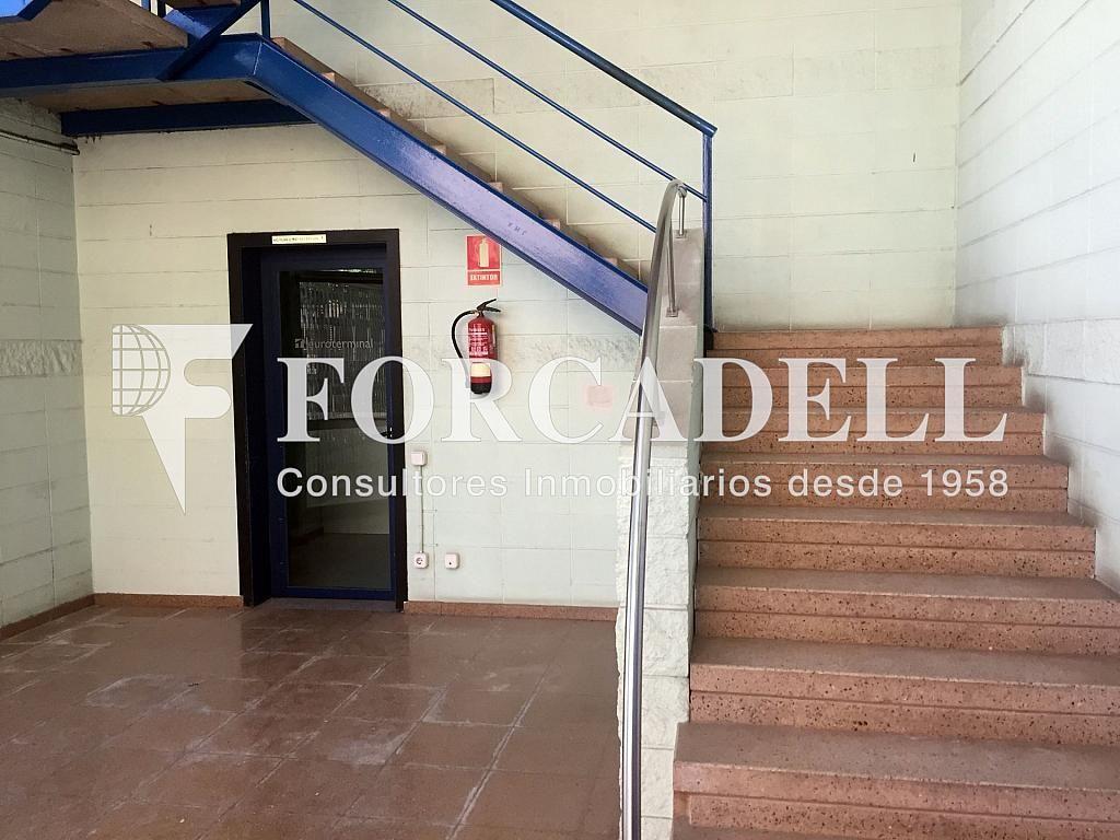 IMG_4031 - Nave industrial en alquiler en calle Botanica, Gran Via LH en Hospitalet de Llobregat, L´ - 301982553