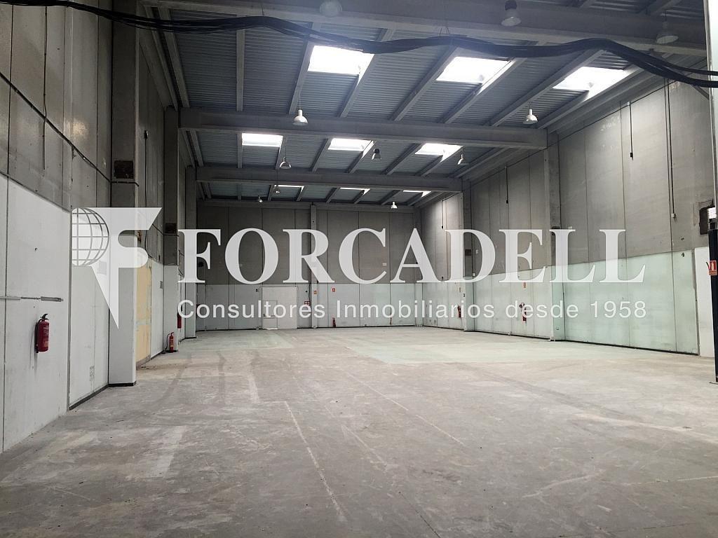 IMG_4032 - Nave industrial en alquiler en calle Botanica, Gran Via LH en Hospitalet de Llobregat, L´ - 301982556