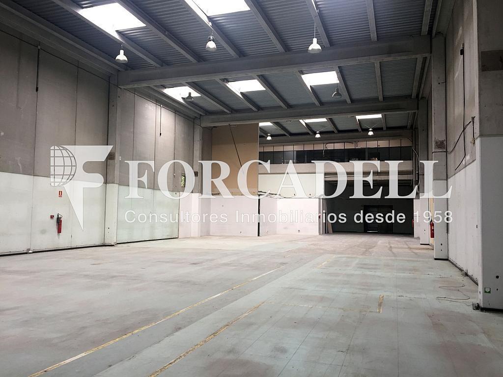 IMG_4033 - Nave industrial en alquiler en calle Botanica, Gran Via LH en Hospitalet de Llobregat, L´ - 301982559