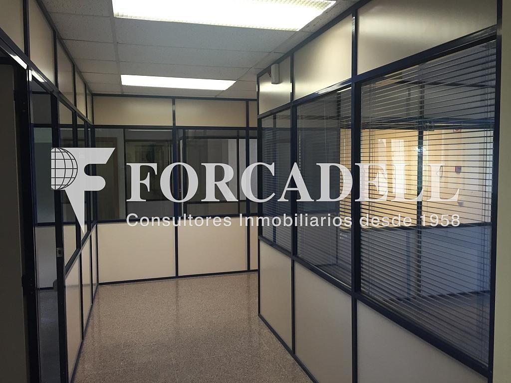 IMG_4036 - Nave industrial en alquiler en calle Botanica, Gran Via LH en Hospitalet de Llobregat, L´ - 301982565