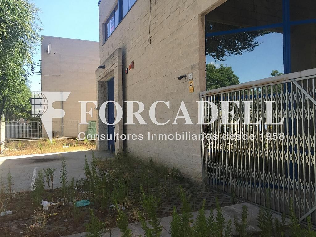 IMG_4040 - Nave industrial en alquiler en calle Botanica, Gran Via LH en Hospitalet de Llobregat, L´ - 301982574