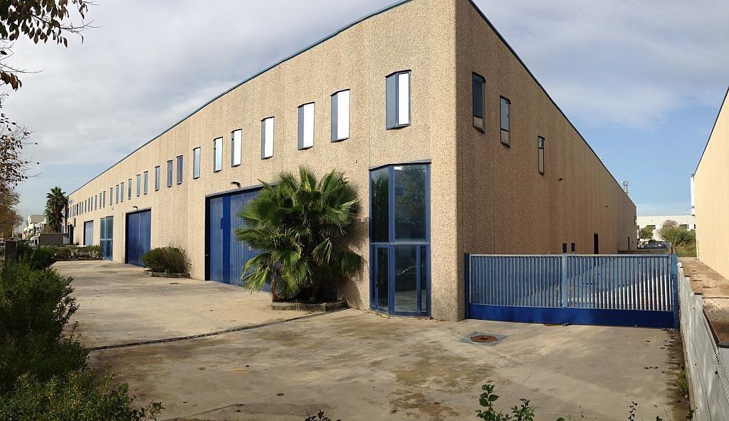 IMG_0973 - Nave industrial en alquiler en calle Montserrat Roig, Centre en Hospitalet de Llobregat, L´ - 266470056