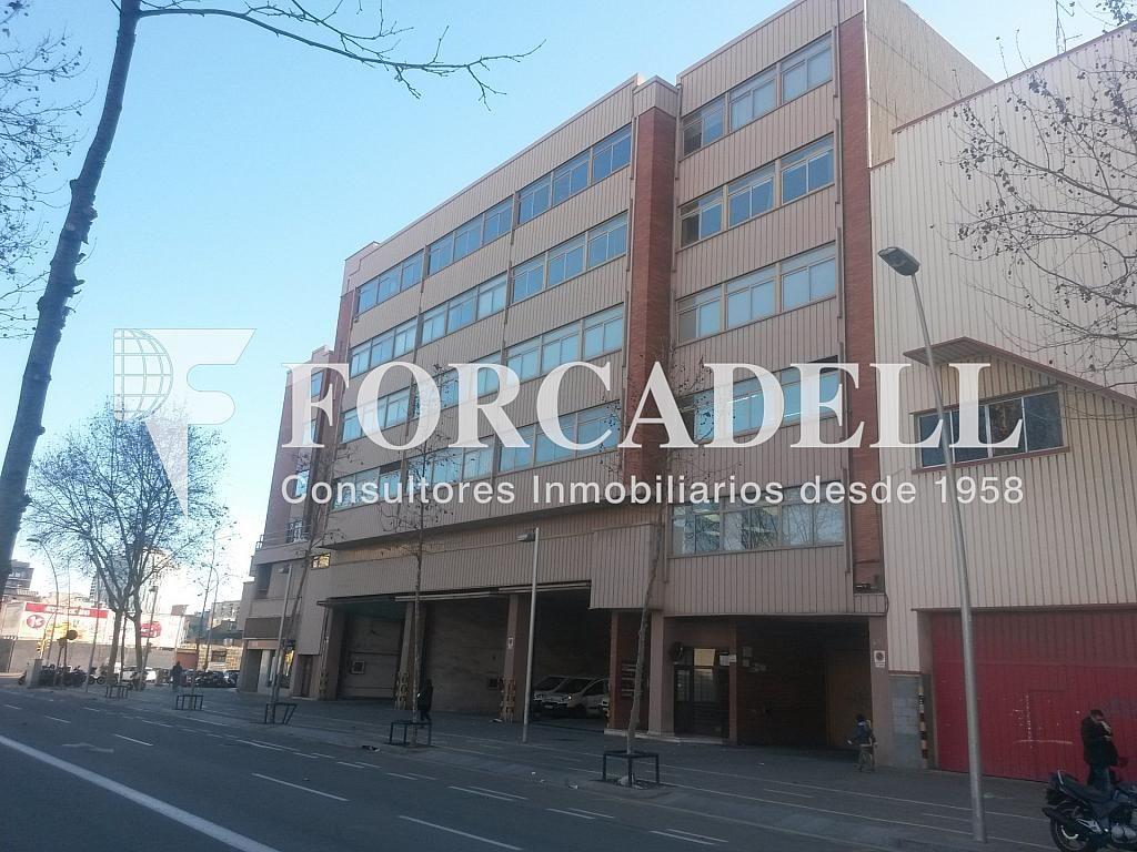 20140204_163953 - Nave industrial en alquiler en calle Josep Pla, El Raval en Barcelona - 266472834