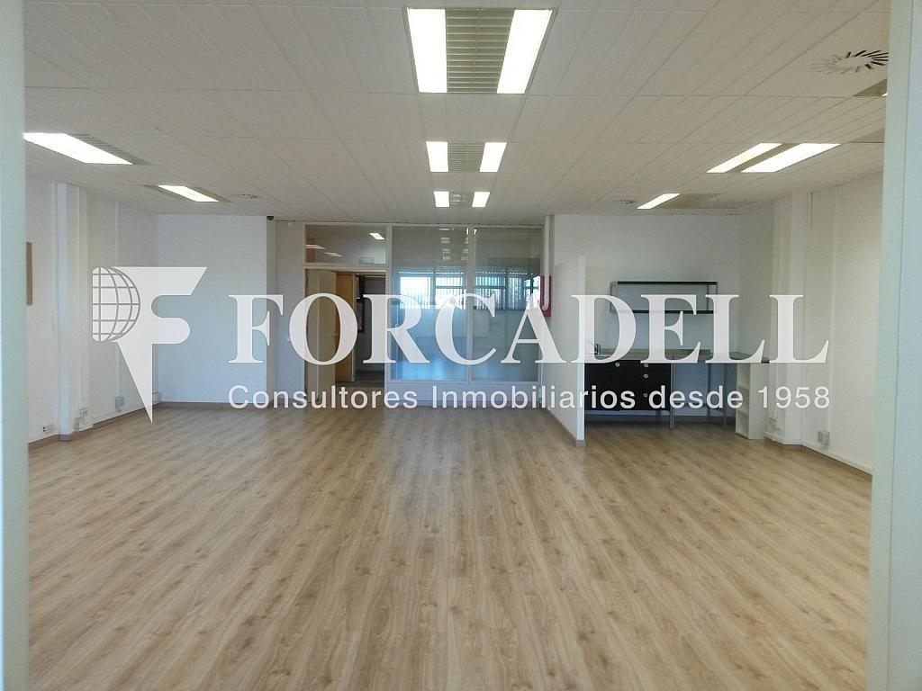 20140204_165912 - Nave industrial en alquiler en calle Josep Pla, El Raval en Barcelona - 266472840