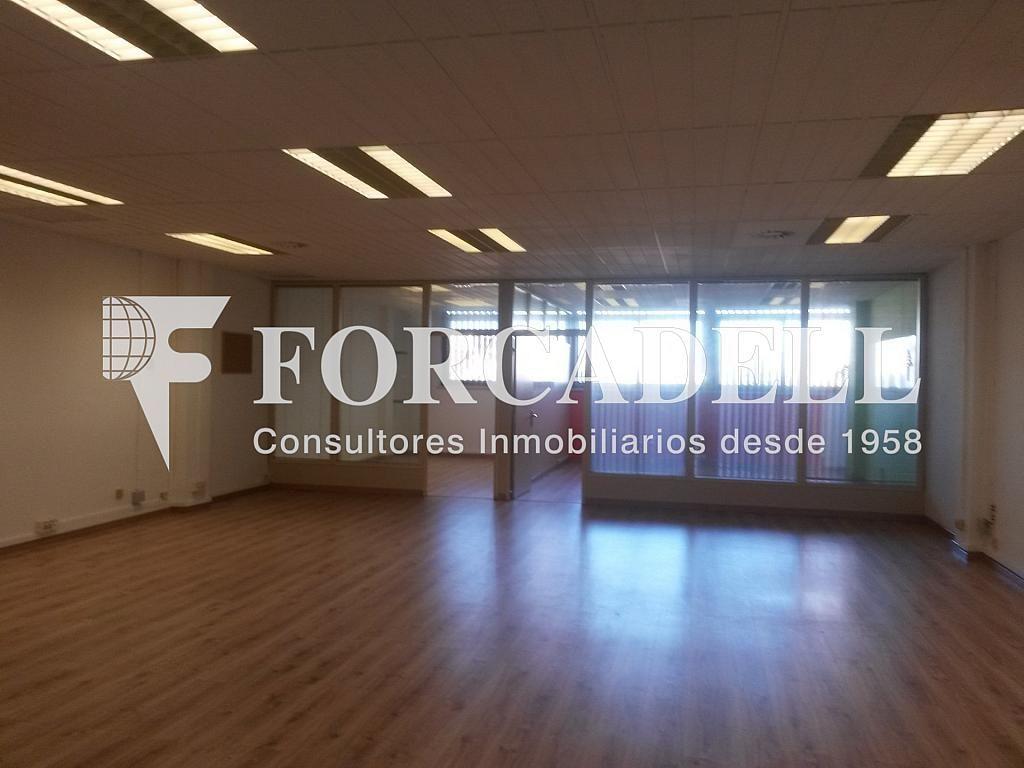 20140204_165824 - Nave industrial en alquiler en calle Josep Pla, El Raval en Barcelona - 266472843