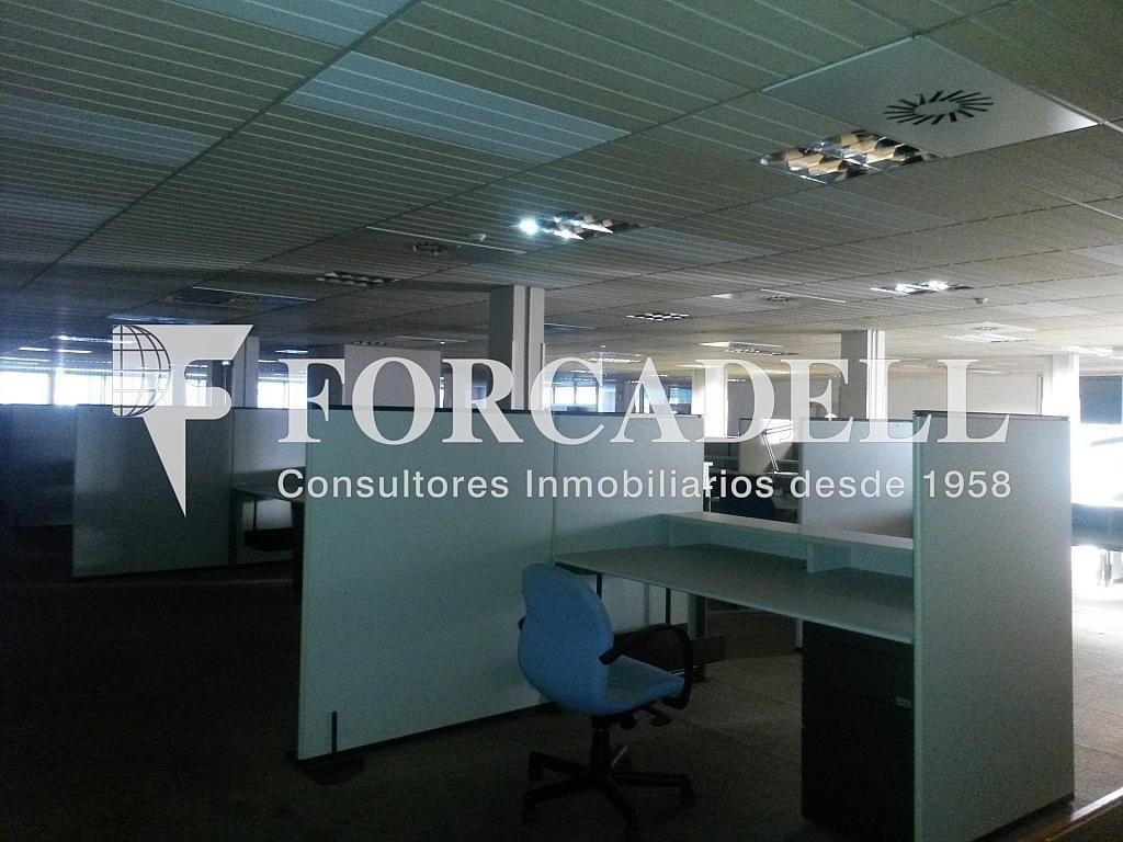 20140204_170530 - Nave industrial en alquiler en calle Josep Pla, El Raval en Barcelona - 266472846