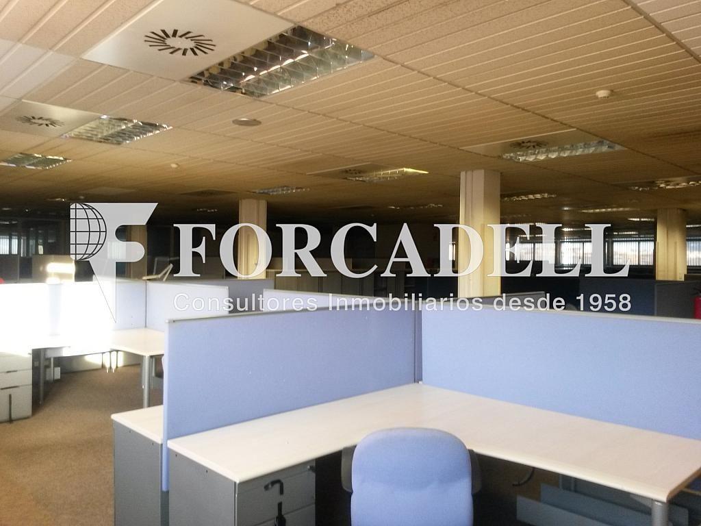 20140204_171035 - Nave industrial en alquiler en calle Josep Pla, El Raval en Barcelona - 266472849