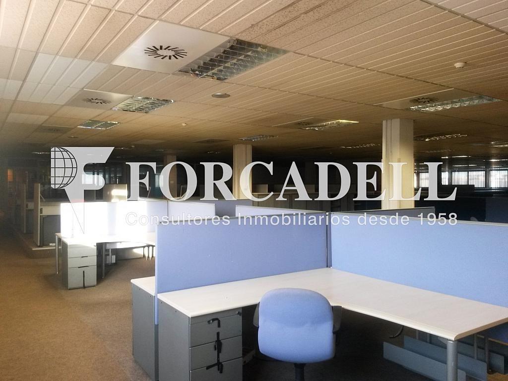 20140204_171050 - Nave industrial en alquiler en calle Josep Pla, El Raval en Barcelona - 266472852