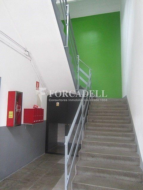 IMG_3184 - Nave industrial en alquiler en calle Corominas, La Torrassa en Hospitalet de Llobregat, L´ - 266464776