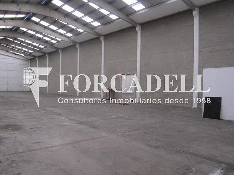 Foto 006 - Nave industrial en alquiler en calle Can Sellarés, Sant Andreu de la Barca - 266476137