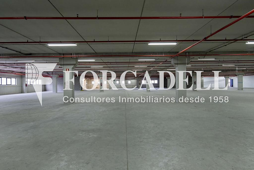 DSC_3801 - Nave industrial en alquiler en calle Maresme, Cornellà de Llobregat - 360576210