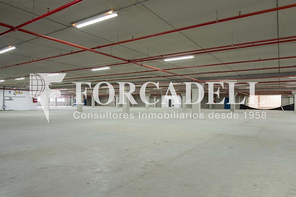 DSC_3791 - Nave industrial en alquiler en calle Maresme, Cornellà de Llobregat - 360576219