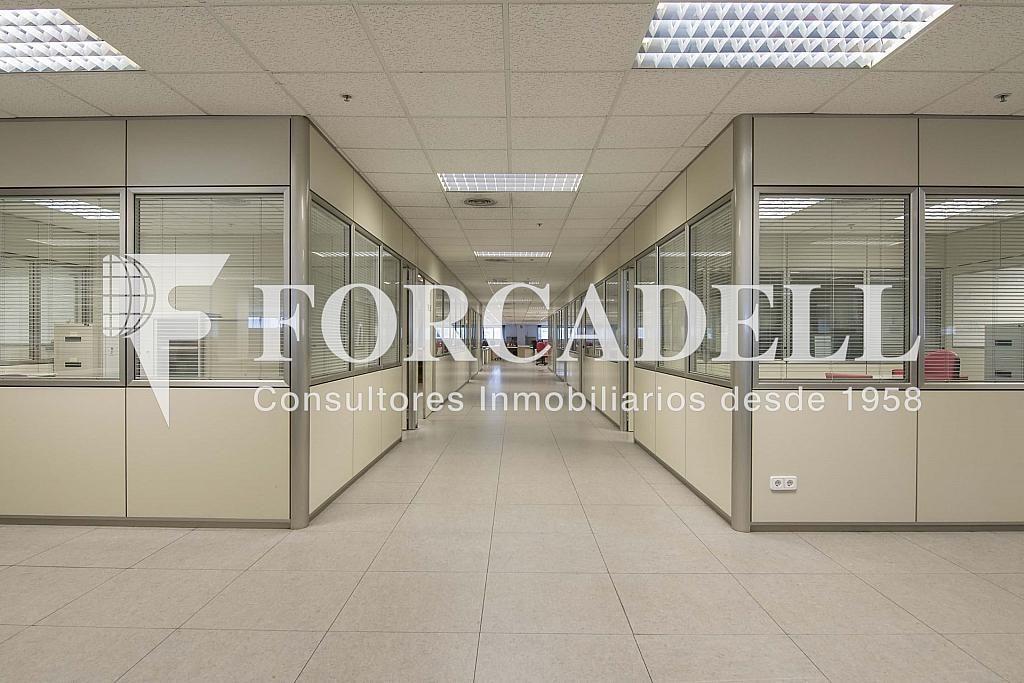 DSC_3751 - Nave industrial en alquiler en calle Maresme, Cornellà de Llobregat - 360576228