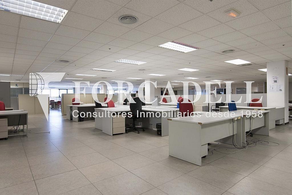 DSC_3750 - Nave industrial en alquiler en calle Maresme, Cornellà de Llobregat - 360576231