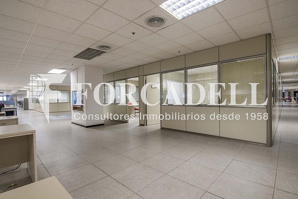 DSC_3736 - Nave industrial en alquiler en calle Maresme, Cornellà de Llobregat - 360576243
