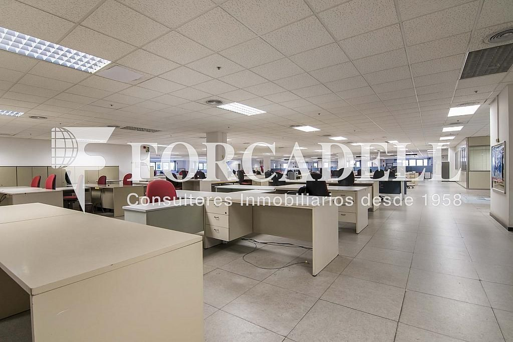 DSC_3735 - Nave industrial en alquiler en calle Maresme, Cornellà de Llobregat - 360576246