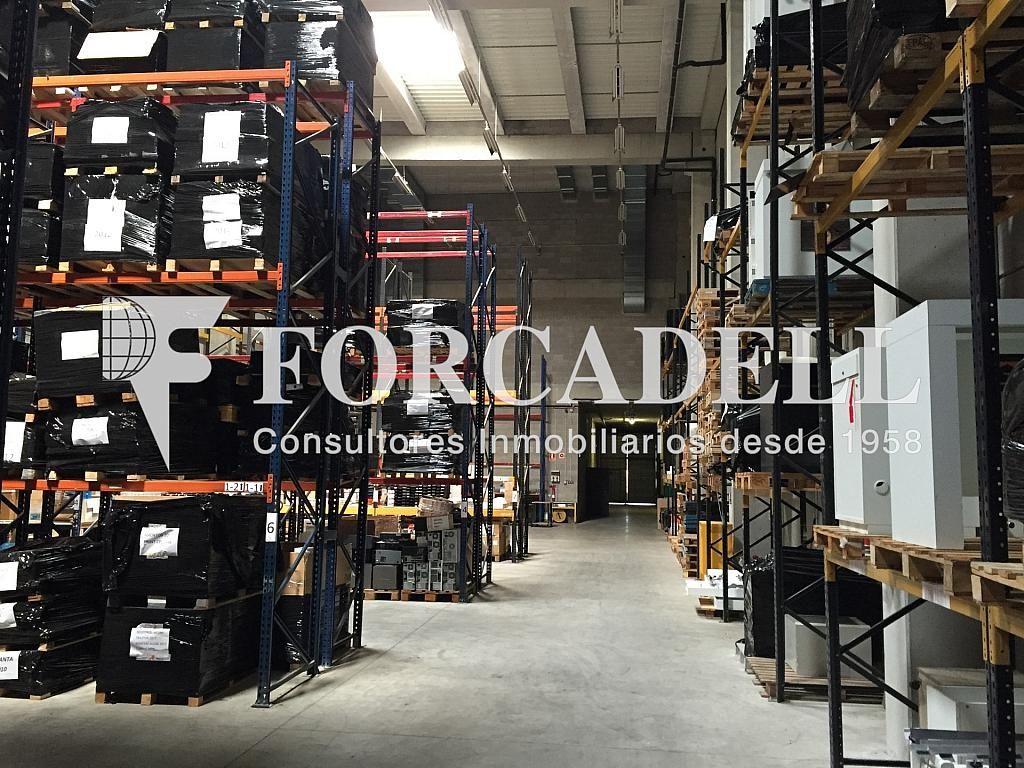 IMG_1813 - Nave industrial en alquiler en calle Botanica, Gran Via LH en Hospitalet de Llobregat, L´ - 266471136