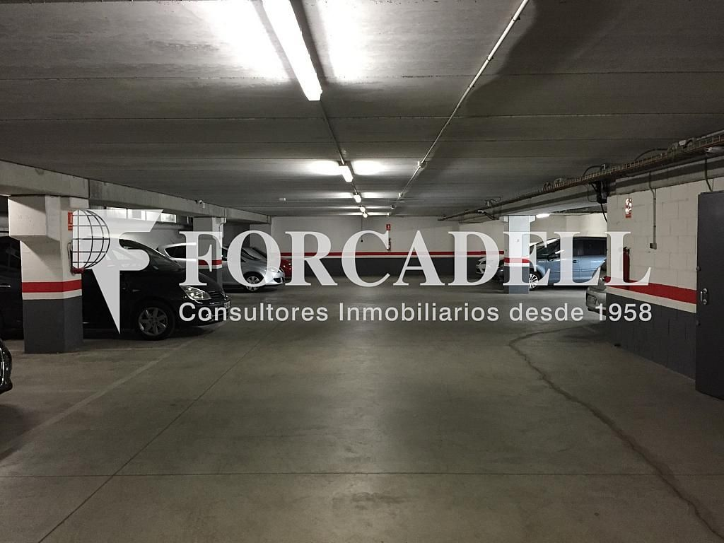 IMG_1814 - Nave industrial en alquiler en calle Botanica, Gran Via LH en Hospitalet de Llobregat, L´ - 266471151