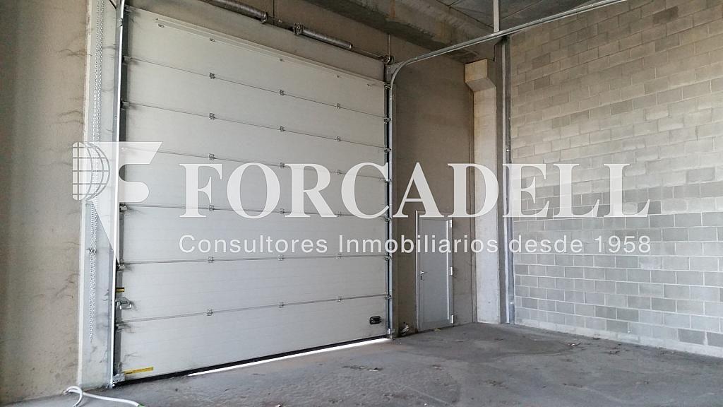 20150112_154806 - Nave industrial en alquiler en calle Pins Roses, Cardedeu - 266470437