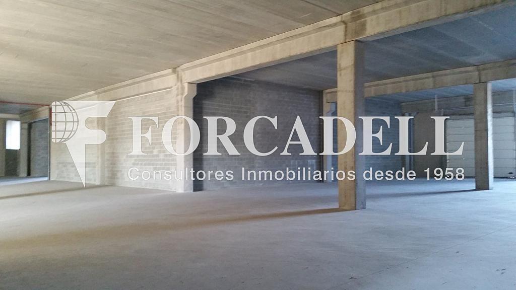 20150112_154933 - Nave industrial en alquiler en calle Pins Roses, Cardedeu - 266470440