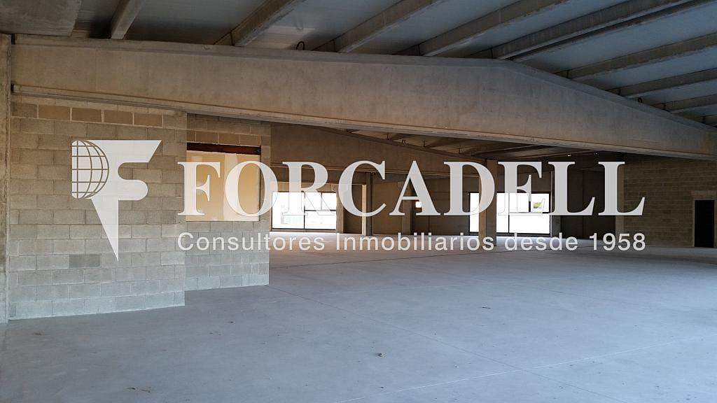 20150112_155414 - Nave industrial en alquiler en calle Pins Roses, Cardedeu - 266470446