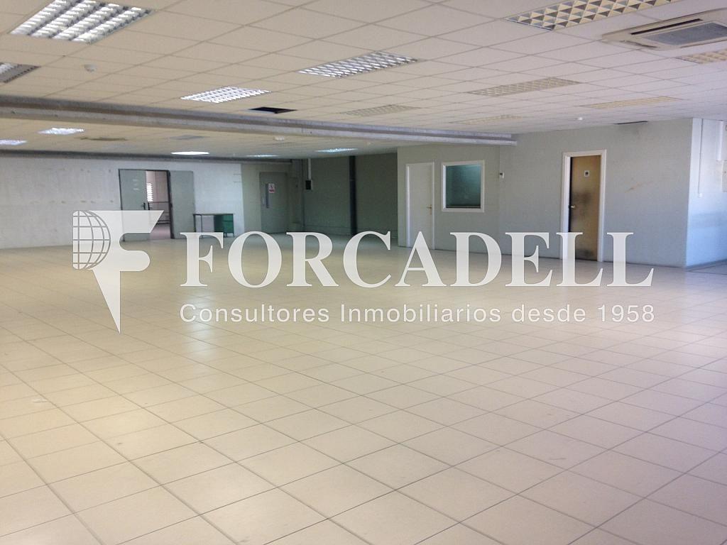 IMG_4753 - Nave industrial en alquiler en calle Enginy, Gavà - 266469048
