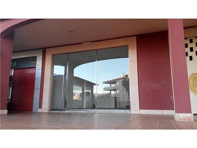 Local comercial en alquiler en Almerimar - 311004832