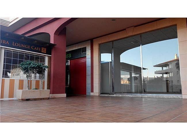 Local comercial en alquiler en Almerimar - 311004835