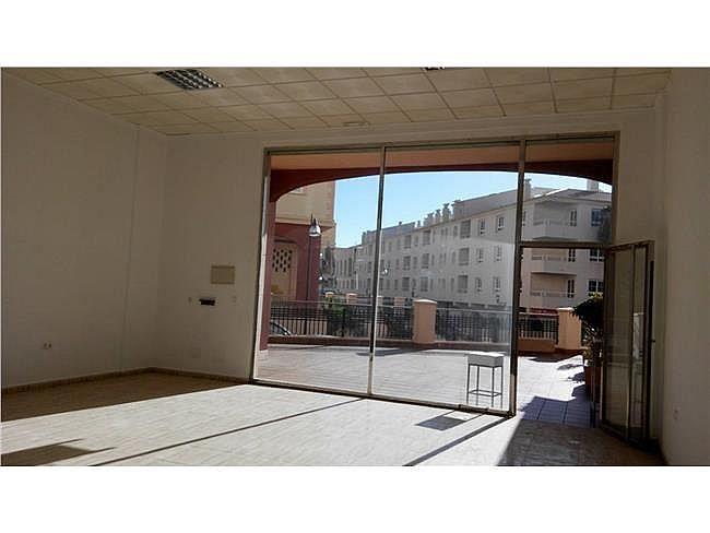 Local comercial en alquiler en Almerimar - 311004838