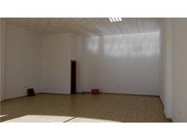 Local comercial en alquiler en Almerimar - 311004841