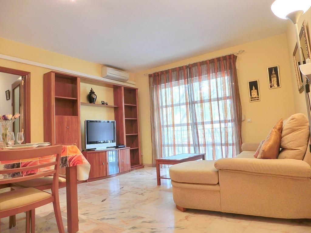 Piso en alquiler en calle Centenario, Barrio Bajo en Sanlúcar de Barrameda - 272209691