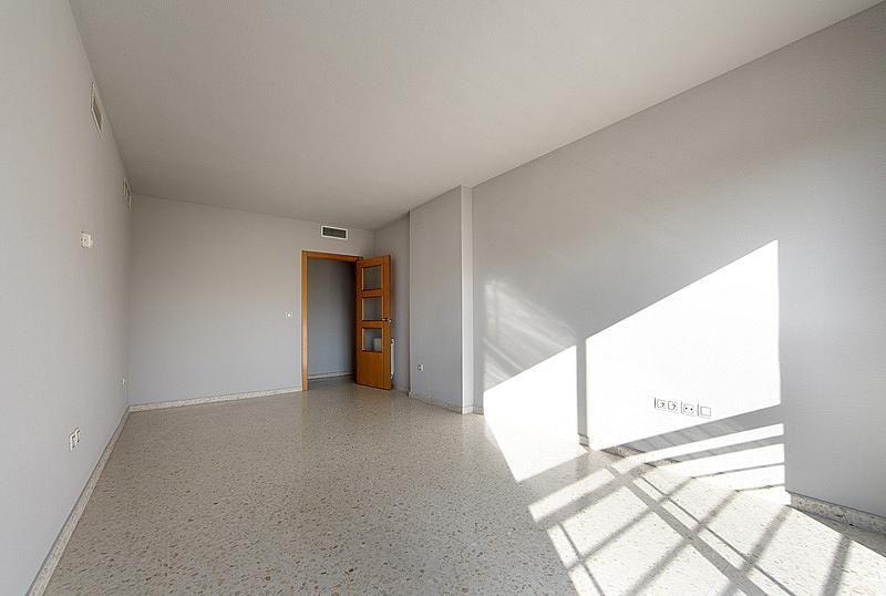 Salón - Piso en alquiler en calle Isla de la Gomera, Beiro en Granada - 126571461