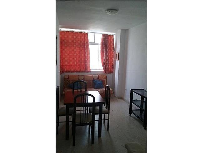 Piso en alquiler en Paterna de Rivera - 365566567