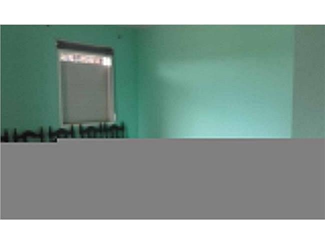 Estudio en alquiler en Chiclana de la Frontera - 335255518
