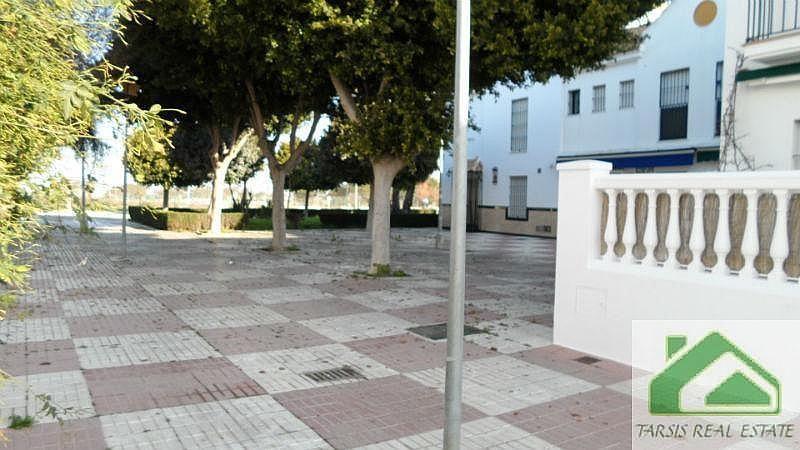 Foto2 - Dúplex en alquiler en Chipiona - 339363878