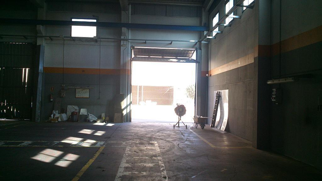 Nave industrial en alquiler en calle Can Salvatella, Barbera del Vallès - 216599227