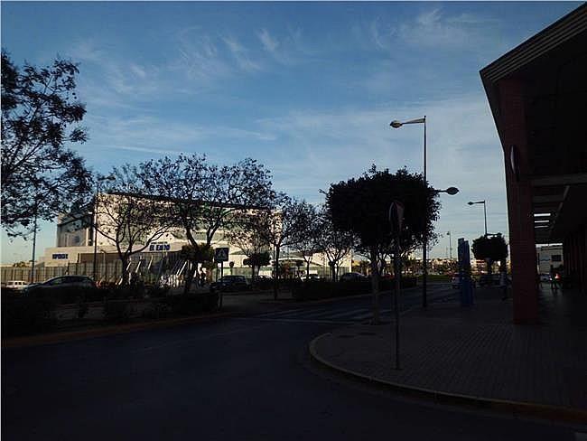 Local comercial en alquiler en Ejido (El) - 306326132