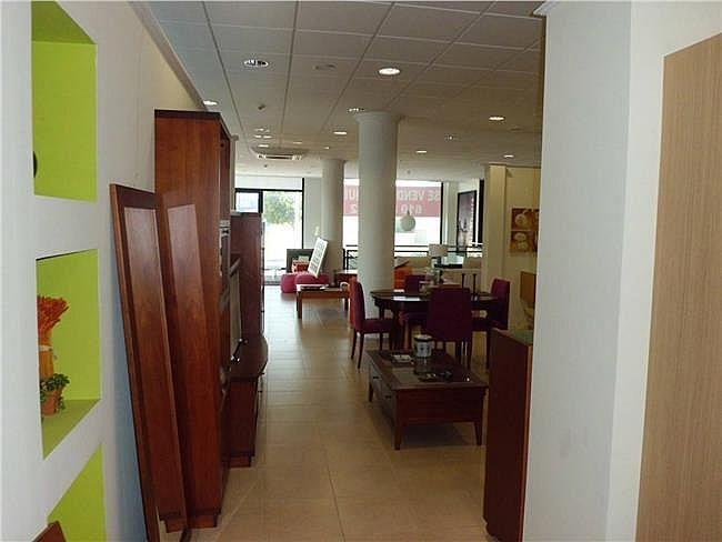 Local comercial en alquiler en Ejido (El) - 306327656